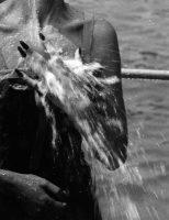 water-anvers1